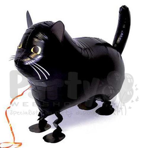 Sexy BLK mačička