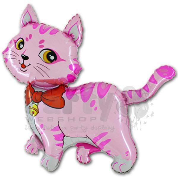 ružová mačička Foto